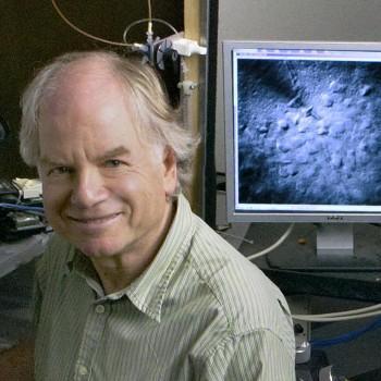 Shaul Hestrin, PhD
